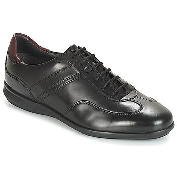 Skor Herr Sneakers André CAMERINO Svart