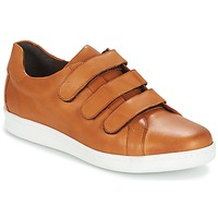 Skor Herr Sneakers André AVENUE Brun