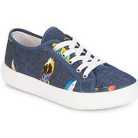 Skor Flick Sneakers André PLUMETTE Jeans