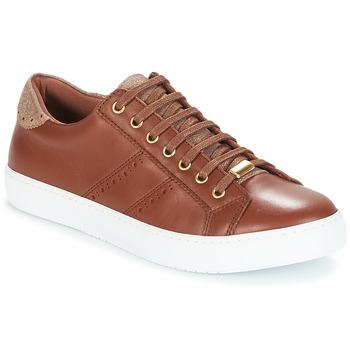 Skor Dam Sneakers André BERKELEY Cognac