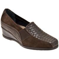 Skor Dam Loafers Confort