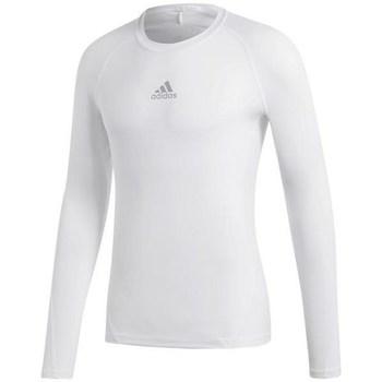 textil Herr Långärmade T-shirts adidas Originals Alphaskin Sport LS Vit