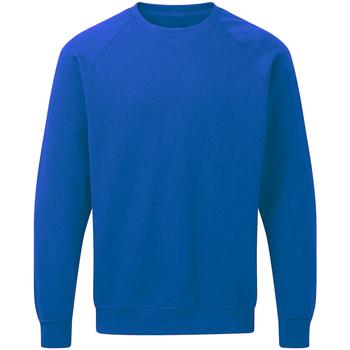 textil Herr Sweatshirts Sg Raglan Kungliga
