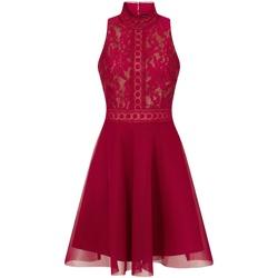 textil Dam Korta klänningar Little Mistress  Bär